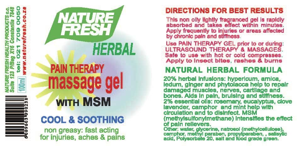 Herbal Pain Therapy Massage Gel