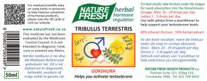 tribulus_terrestris_web