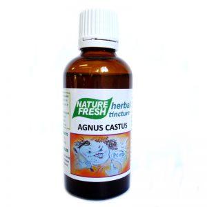 NF 031 HORMONE BALANCING SUPPLEMENTS: AGNUS CASTUS: 50ml tinc