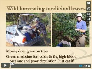 Nature Fresh begins in 1996